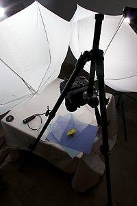 Setup Shot